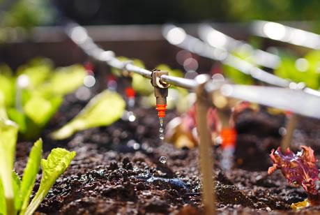 fertilizantes-liquidos