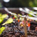 Instalaciones de fertirrigación en Agricultura Ecológica, manual de mantenimiento